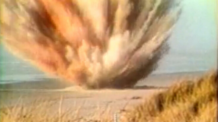Quando gli americani fecero esplodere una balena